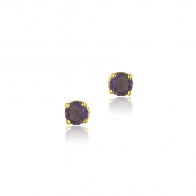 9ct Yellow Gold Round Amethyst Stud Earrings EYT3641