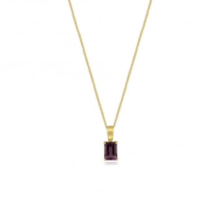 Octagonal Shape Amethyst Necklace in 9ct Yellow Gold PY3676 + CY2241