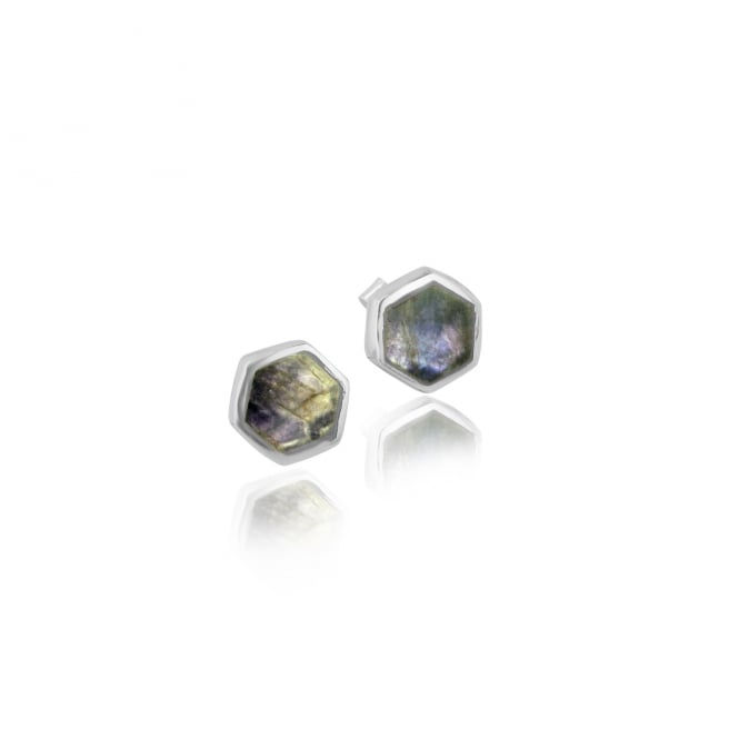 Silver 8.5mm Hexagonal Stud Earrings EST13315